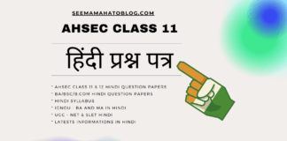 ahsec-class-11-hindi-question-papers